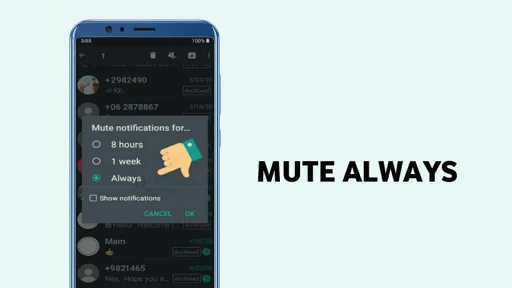 Mute Always feature