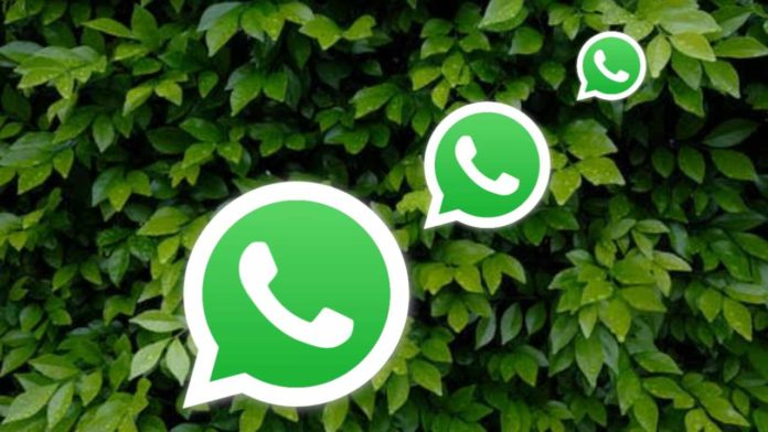 How to chat without opening WhatsApp